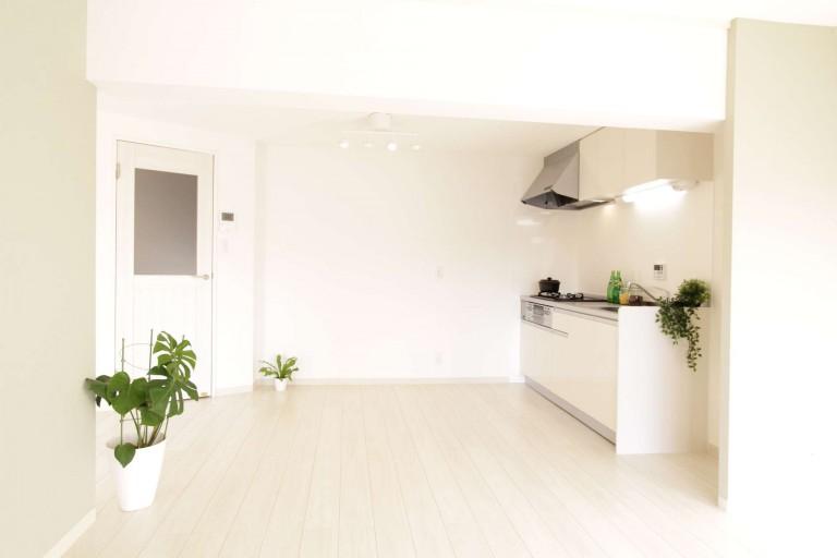 新品の広いキッチン